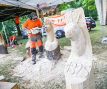 hitrostno-kiparjenje-z-motorko-3